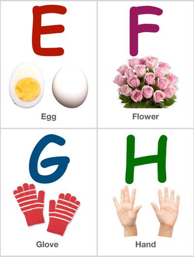 Alphabet Flashcards: EFGH