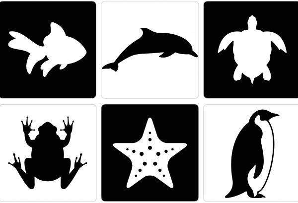 Black And White Flashcards Of Animals For Newborn Babies Free Printable Worksheets For Kids