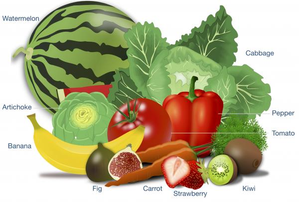 Identify various fruits and vegetables from an illustration picture