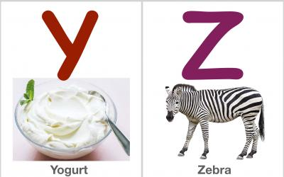 Alphabet Flashcards: YZ