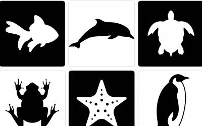 Black and White Flashcards of Animals for Newborn Babies