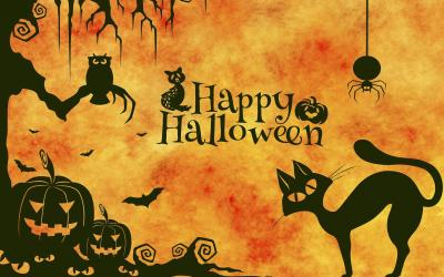Happy Halloween card featuring owl, black cat, spider, bats and pumpkins